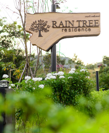 raintree-ABOUT
