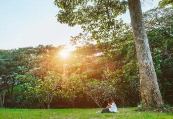 Rain Tree Residence-news-2